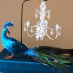 Peacock, Chandelier, Damask Wedding Card Box
