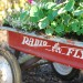 Radio Flyer Garden Planter