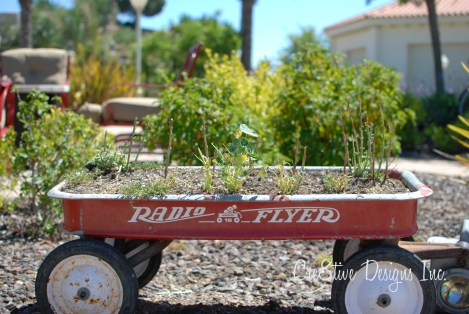 eaten flowers in radio flyer wagon