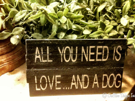 All you need is love..and a dog sign