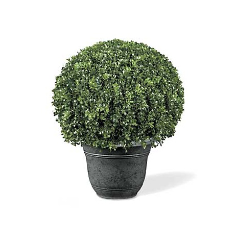 improvements-boxwood-ball-artificial-topiary-ball-d-20100520224610603~6085548w