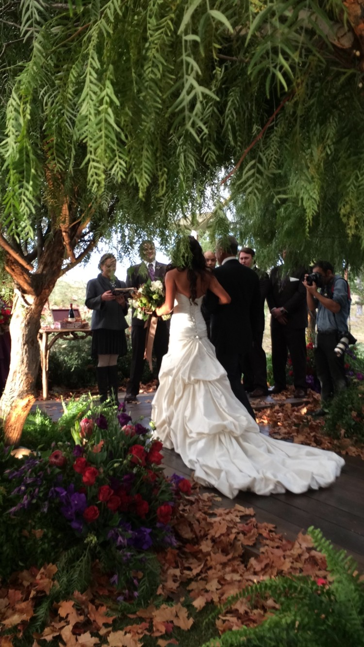 Char's wedding